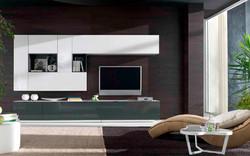 composiciones de salon de estilo moderno (13)