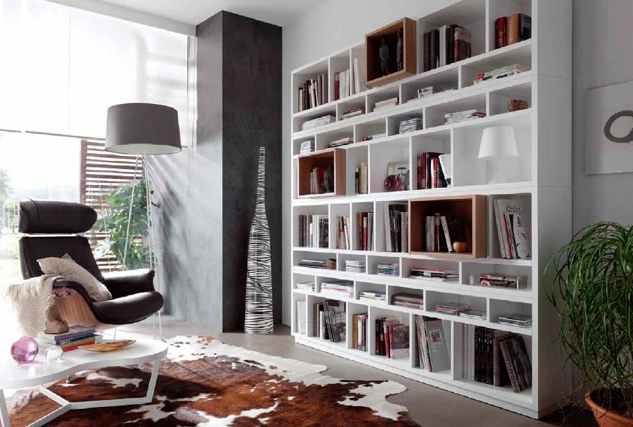 composiciones de salon de estilo moderno (8)