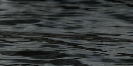 the_water.jpg