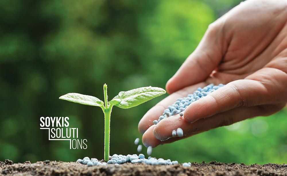 Конкурентна розвідка компаній ринку дистрибуції насіння, засобів захисту рослин та добрив