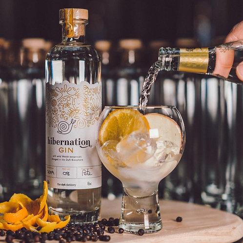 Dyfi Hibernation Gin - 50cl - 45%