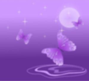 butterfly-69998_960_720.jpg