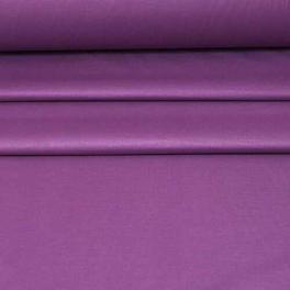fioletowy-śliwka.jpg