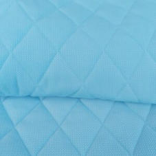 blue mini Caro.jpeg