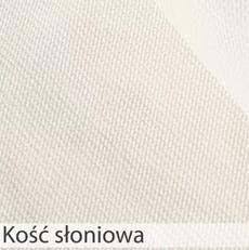 KOŚĆ SŁONIOWA.webp