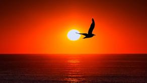 Ballistic Breakthrough | Who is Holy Spirit?