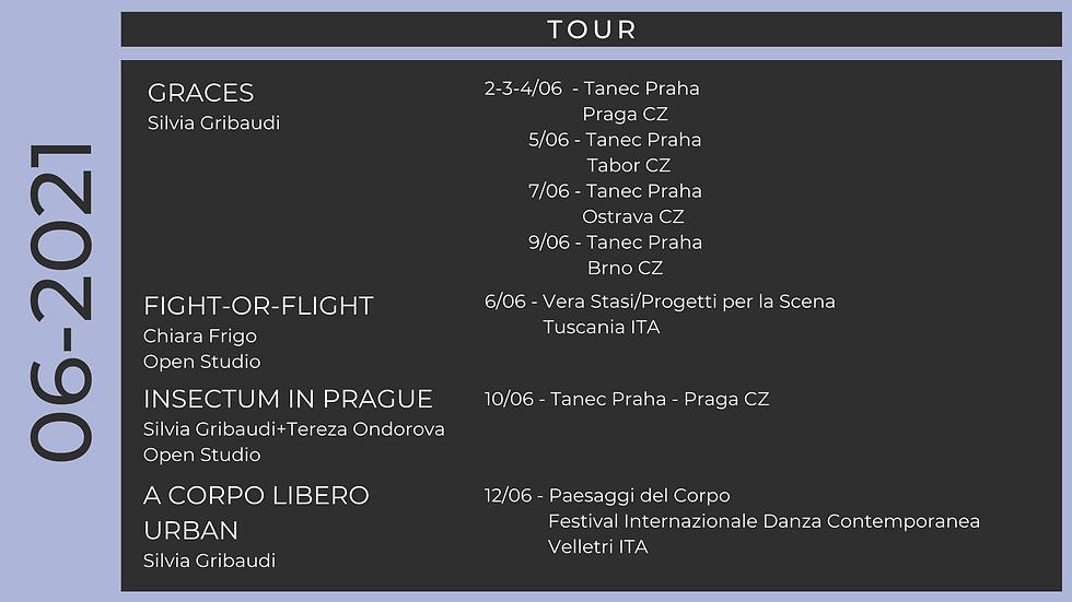 tour giugno 1 Zebra.png