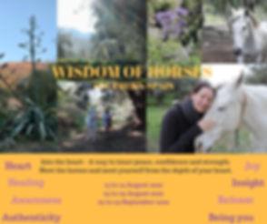 WISDOM OF HORSES.jpg