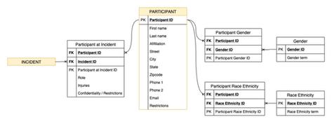 Participant Diagram