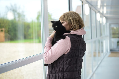 Cattery, Lincolnshire, Market Rasen, Lincoln