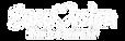 aerovision white logo2.png