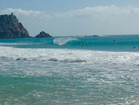Bodyboards (also known as 'Spongers'!)