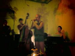 Live at Donau115