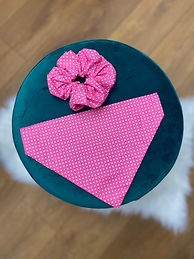 Polka pink set.jpg