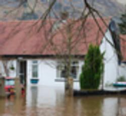 best water damage companies