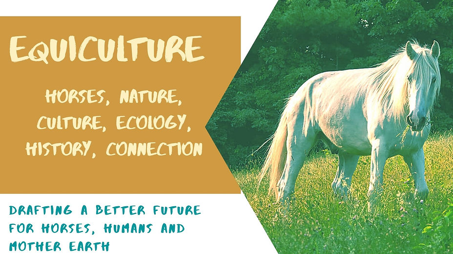 Equiculture.jpg
