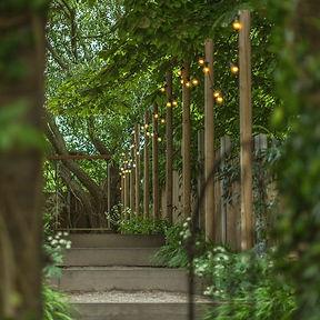 lighting in a secret garden