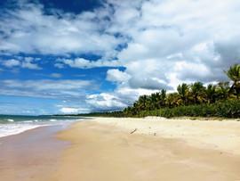praia nativos.jpg