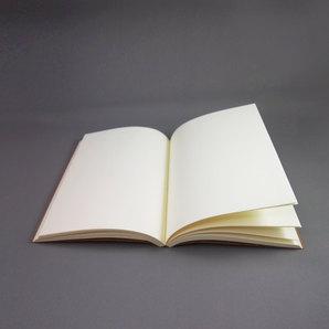 สมุดกระดาษกรีนรีด