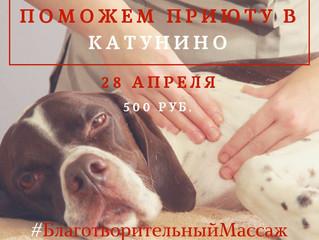 Поможем 🐾 Приюту для бездомных собак в Катунино🐾