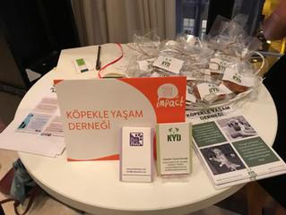 Sosyal Etki ve Sosyal Finansman Konferansı'na katıldık