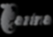 Carina Stander Logo