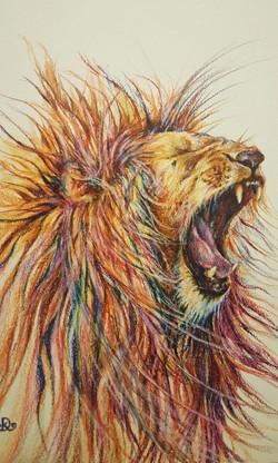 'Wild Mane'