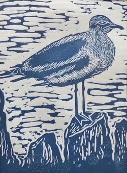 Seagull-2---Sue-Pike