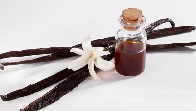 vanilla-featured-photo-770x360.jpg