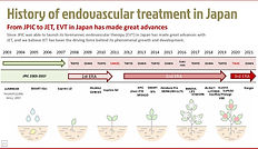 The History of Endovasculartreatment in