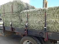 grass bales on truck for delivery 080719