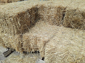 rice straw bales 080719.jpg