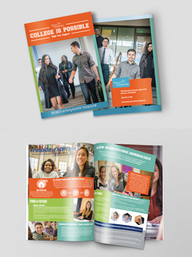 DSF_Booklet_Web.jpg