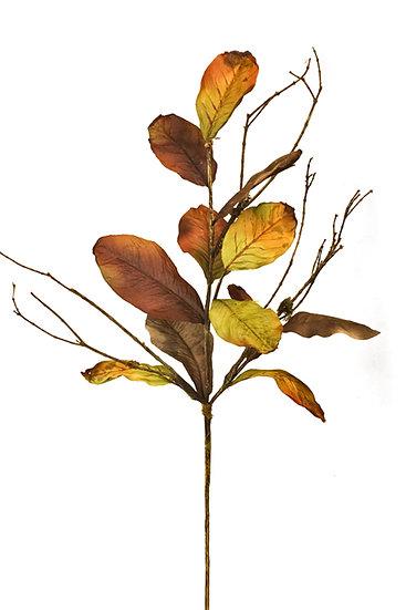 Φύλλα Μανόλιας Καφέ/Πράσινο 60cm | ZAROS