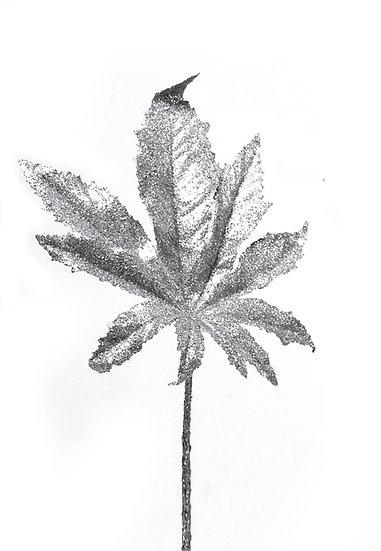 Φύλλο Πλάτανου Ασημί | ZAROS