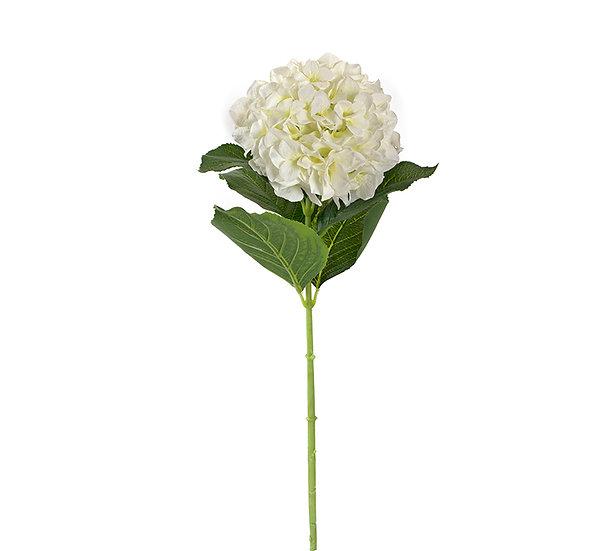 Μεγάλη λευκή ορτανσία με 6 φύλλα,80cm | ZAROS