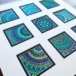 Peacock Windows