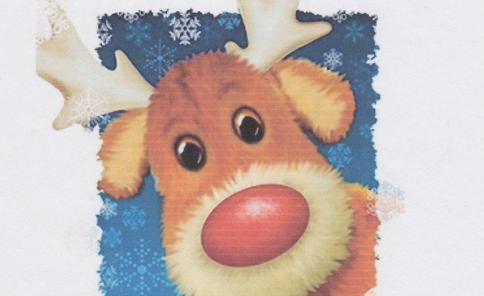 DAV Rudolph T-Shirt
