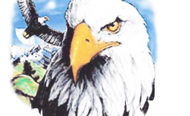 DAV American Eagle T-Shirt