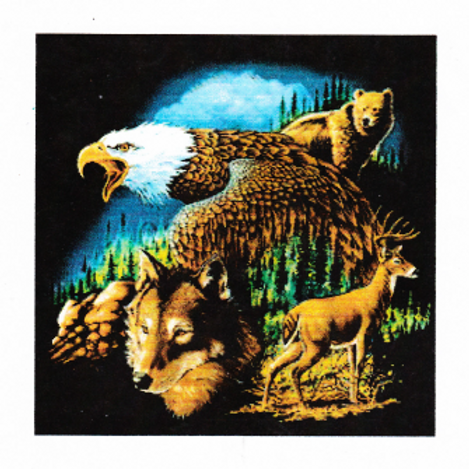 DAV Wildlife T-Shirt