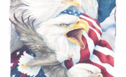 DAV Semper Fi Eagles T-Shirt