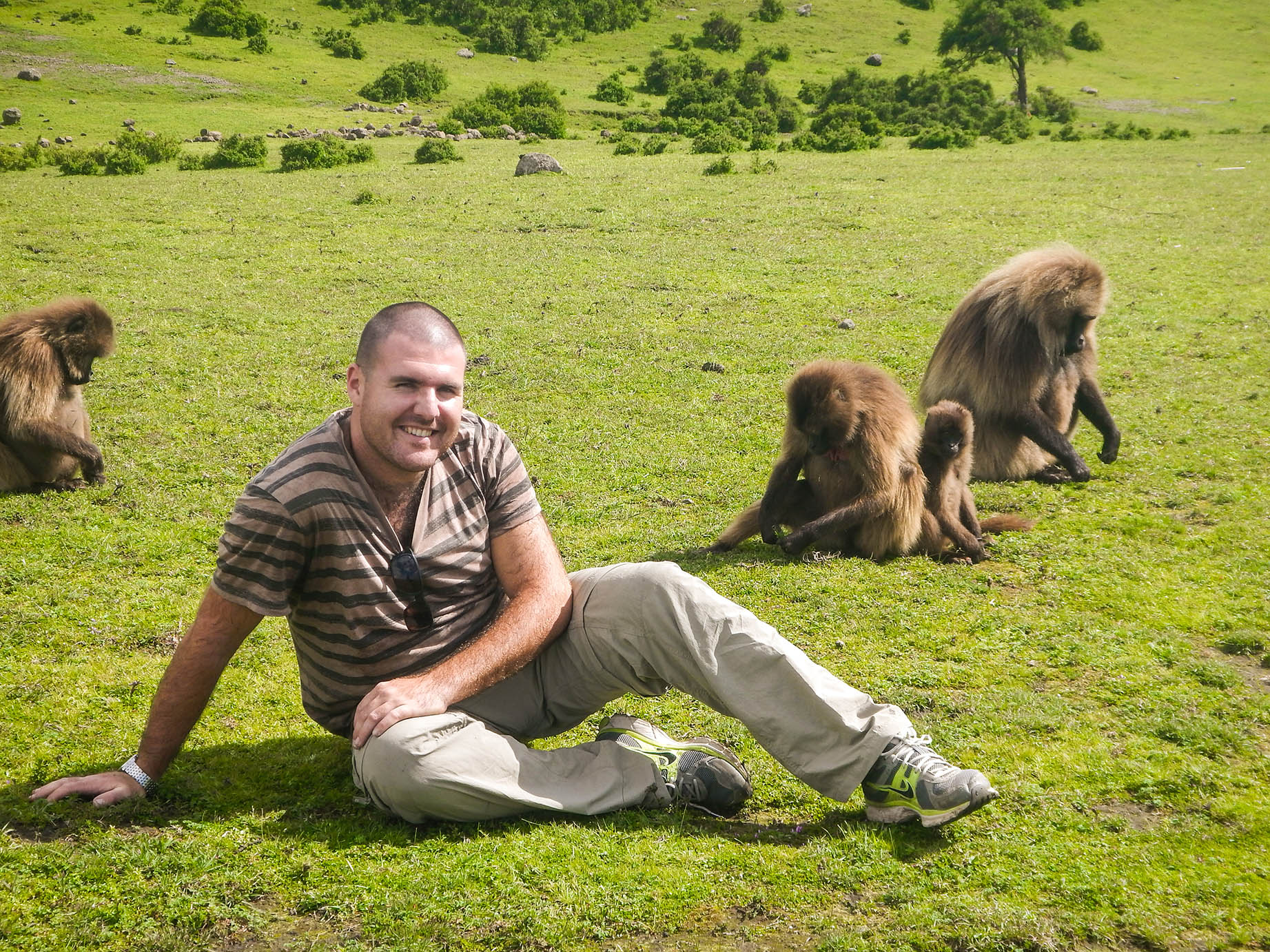 עם הקופי הג'ילאדה בהרי סימיאן