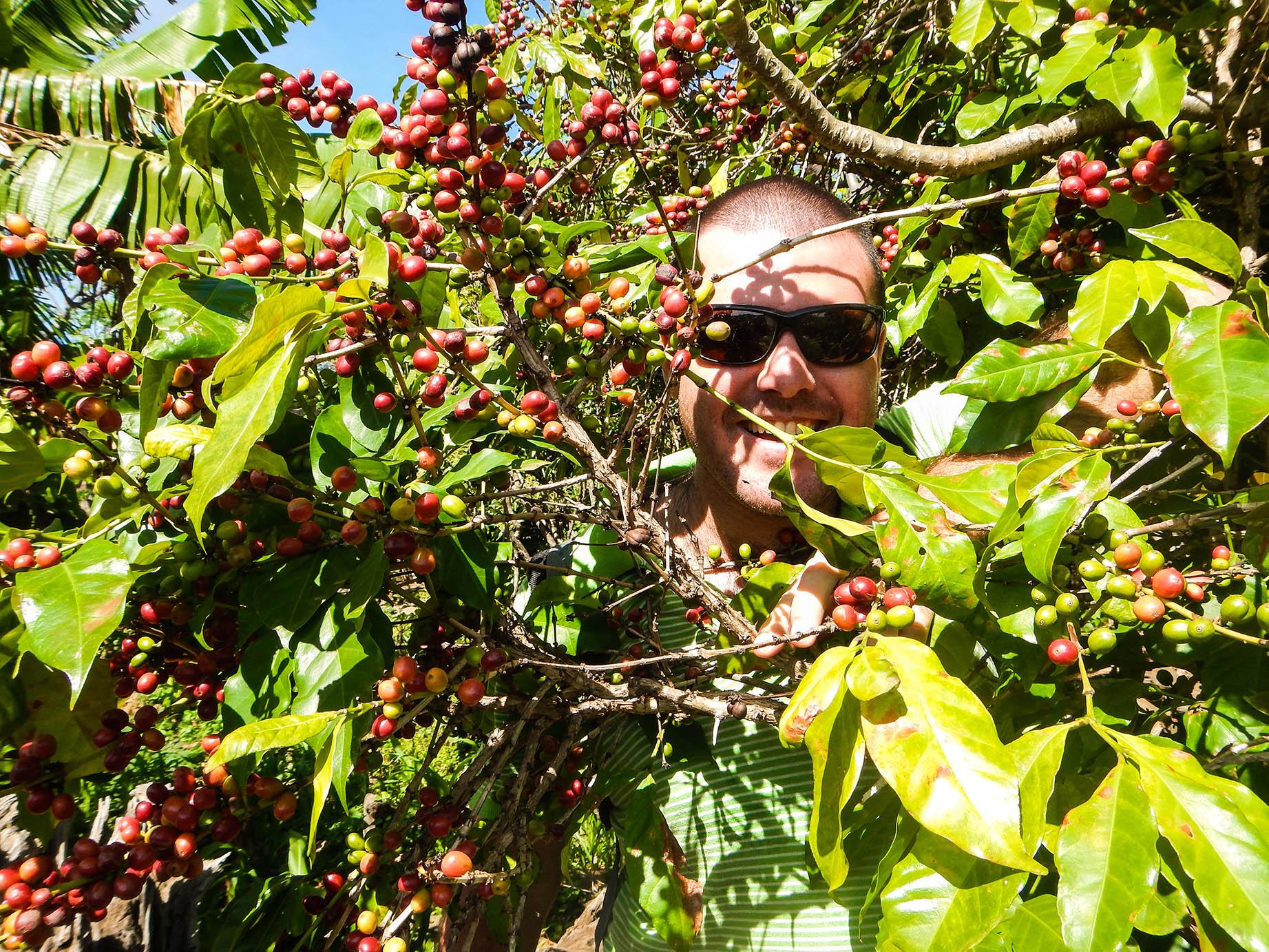 ארץ הקפה -טיול פרטי באתיופיה