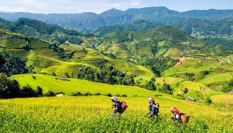 Sapa-Vietnam.jpg