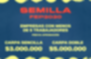 SEMILLA.png