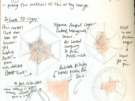 MA Blog- Ideas
