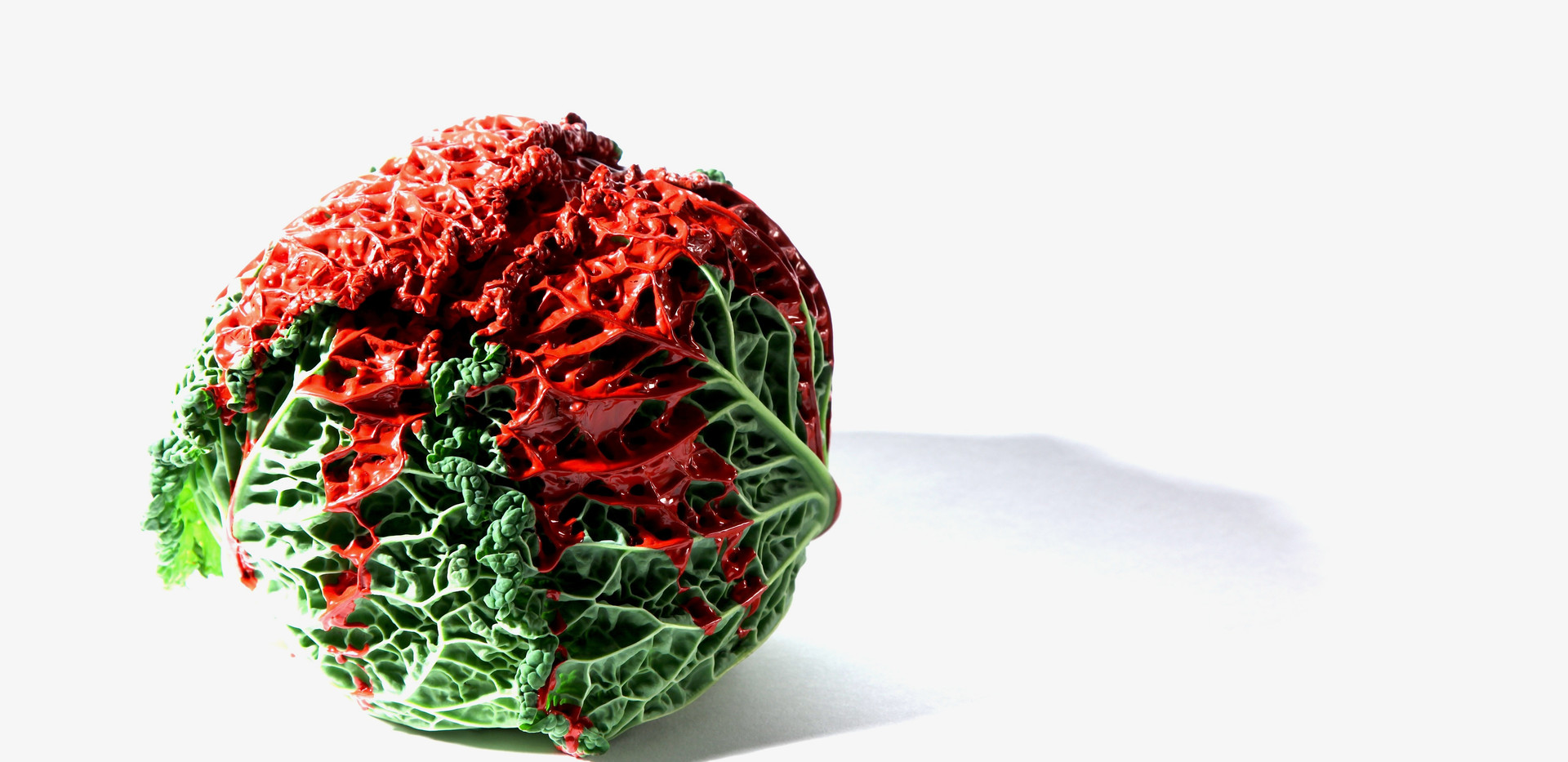 'Cabbage with red paint - Alive' (2017)