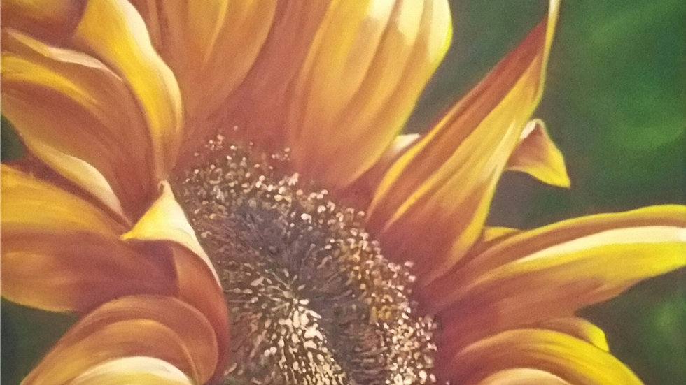186 Partial Sunflower