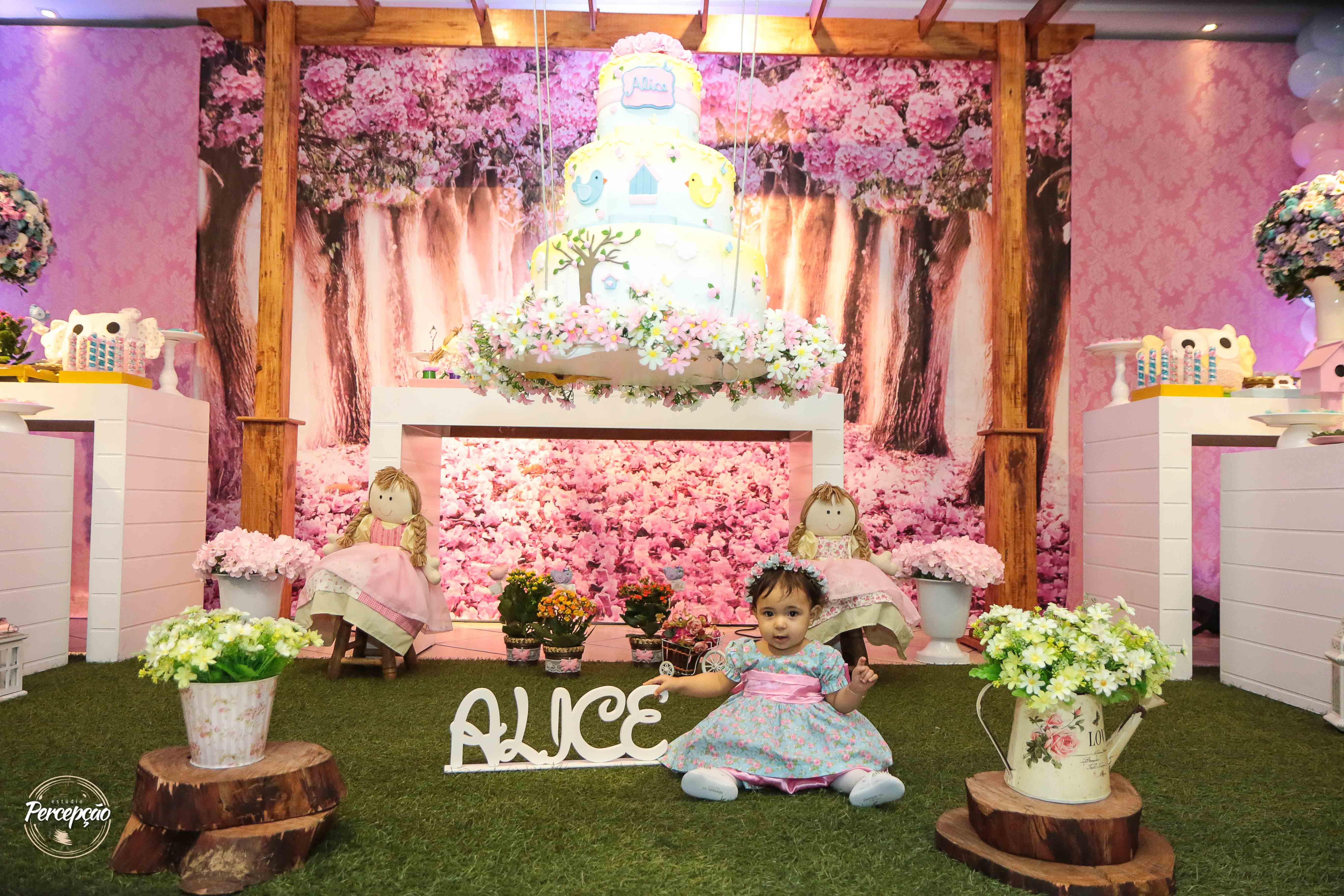 Alice 1 internet-48