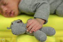 newborn do Davi internet-16